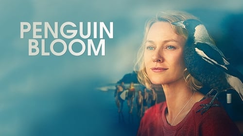Penguin Bloom - The true story of an unlikely hero. - Azwaad Movie Database