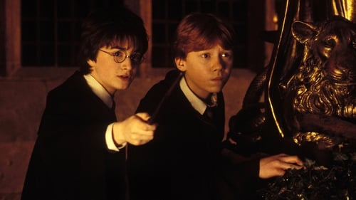 Harry Potter and the Chamber of Secrets, Online Subtitrat