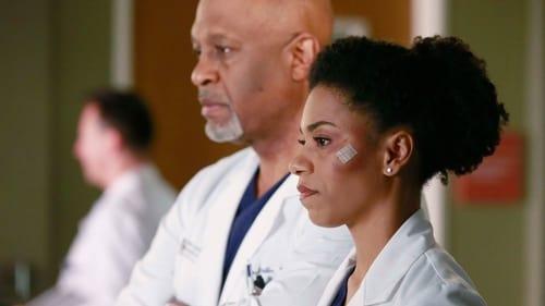 Grey's Anatomy - Season 11 - Episode 16: Don't Dream It's Over