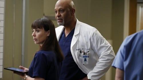 Grey's Anatomy - Season 9 - Episode 12: Walking on a Dream