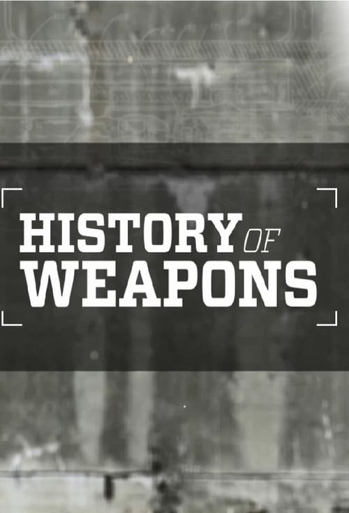 undefined ( History of Weapons )