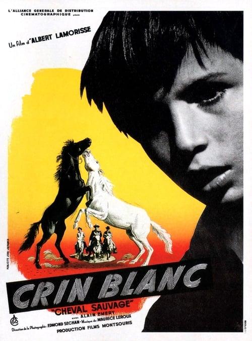Filme Crin blanc: Le cheval sauvage Com Legendas Em Português