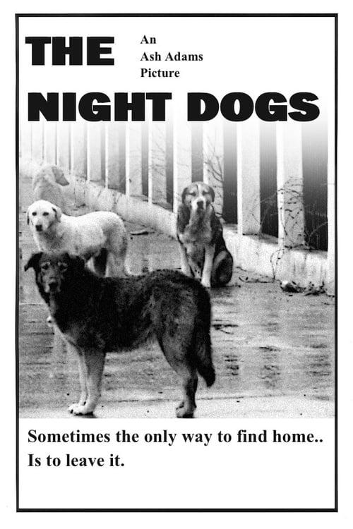 The Night Dogs