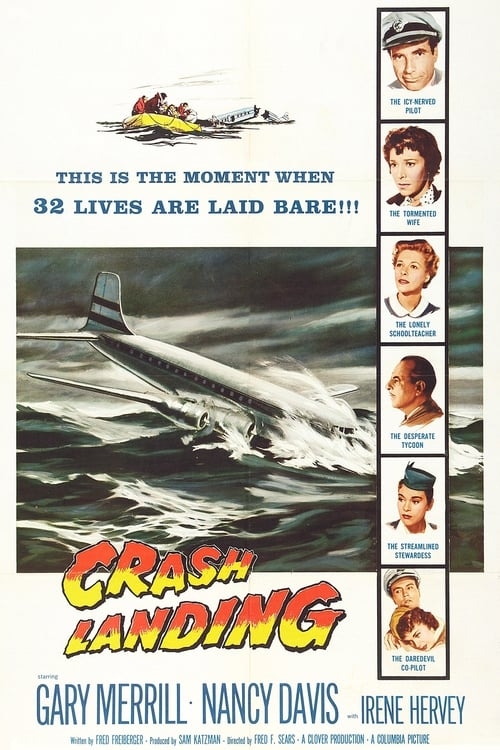 Largescale poster for Crash Landing
