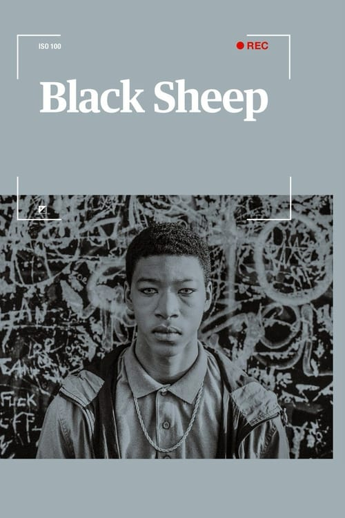 Assistir Black Sheep
