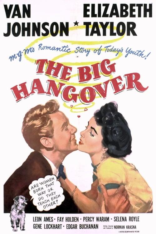 Regarde The Big Hangover En Bonne Qualité Hd 720p