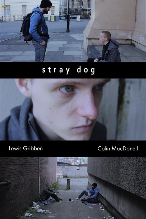 Watch Stray Dog Online Streamin