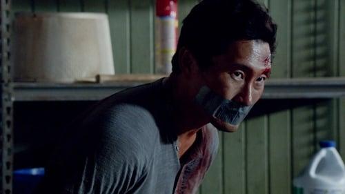 Hawaii Five-0: Season 4 – Episode Pukana