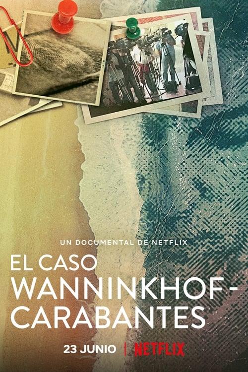 Descargar El caso Wanninkhof-Carabantes en torrent