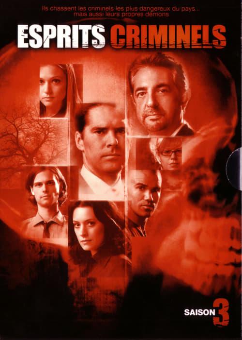 Esprits criminels: Saison 3