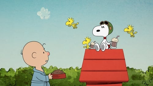 Nunca Irrite o Snoopy.
