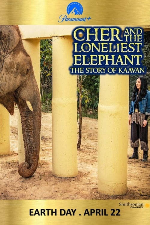 Cher & the Loneliest Elephant