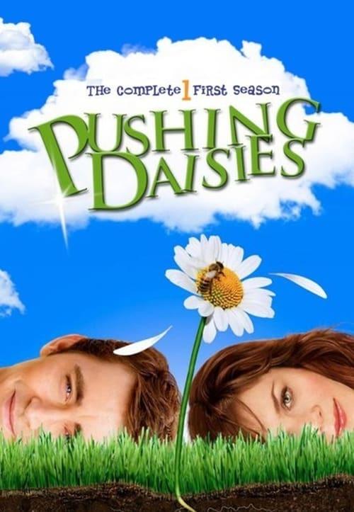 Pushing Daisies Poster