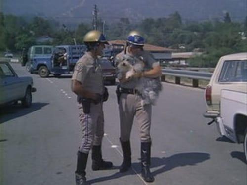 Chips 1977 Amazon Video: Season 1 – Episode Dog Gone