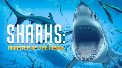 Sharks: Monster Of The Media