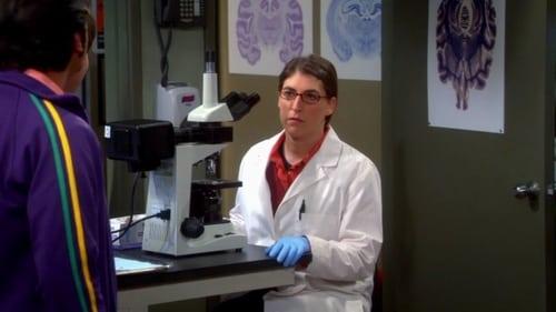 The Big Bang Theory - Season 7 - Episode 13: The Occupation Recalibration