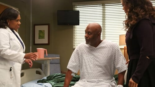 Grey's Anatomy - Season 10 - Episode 5: I Bet It Stung
