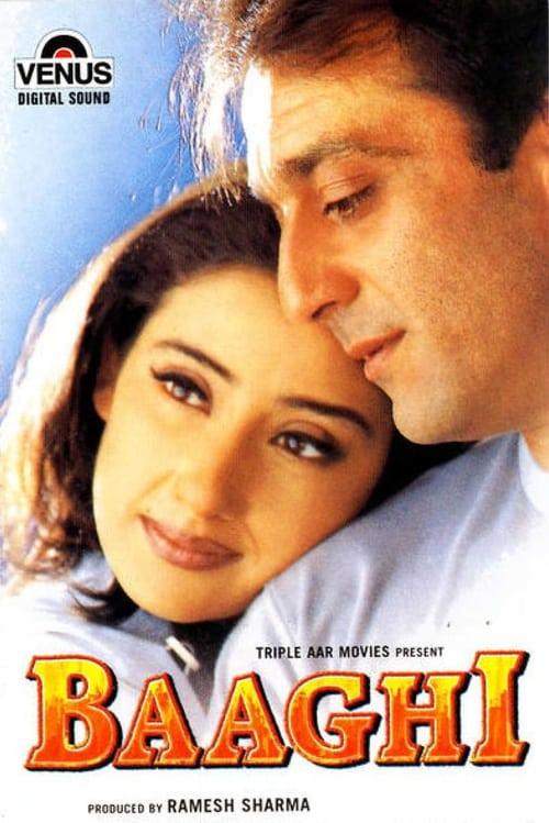 Baaghi film en streaming
