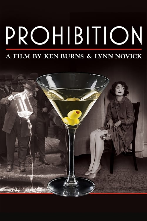 Watch Prohibition Online