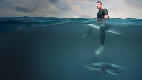 Watch Shark Beach with Chris Hemsworth Online Bravo