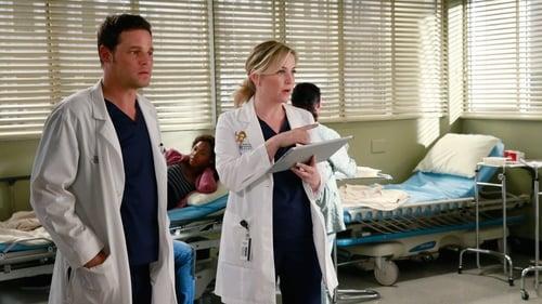Grey's Anatomy - Season 11 - Episode 20: One Flight Down