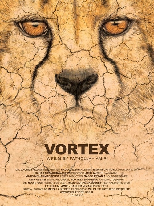 Vortex (2018)