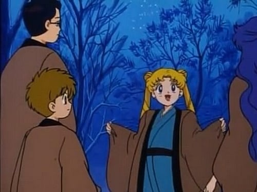 Assistir Sailor Moon S01E40 – 1×40 – Dublado