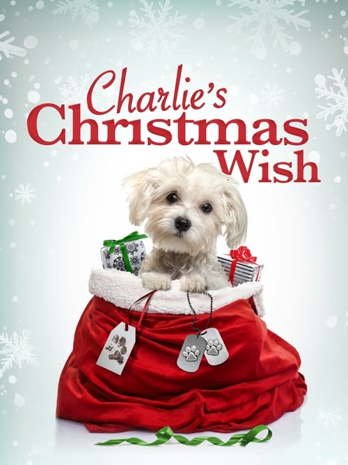 Watch Charlie's Christmas Wish Megashare