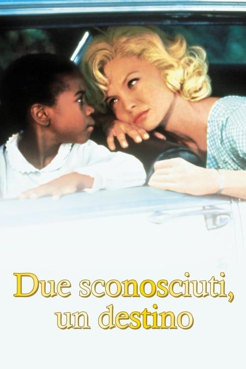 Due sconosciuti, un destino (1992)