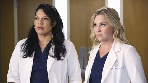 Grey's Anatomy - Season 11 - Episode 1: I Must Have Lost It on the Wind