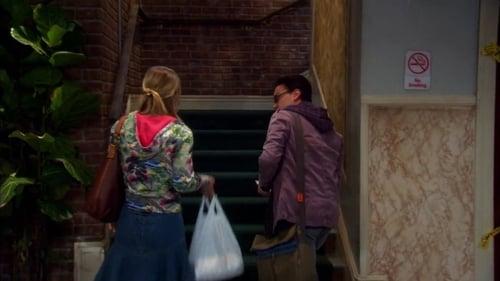 The Big Bang Theory - Season 5 - Episode 9: The Ornithophobia Diffusion