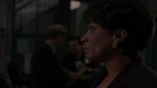 Law & Order: Season 10 – Épisode Justice