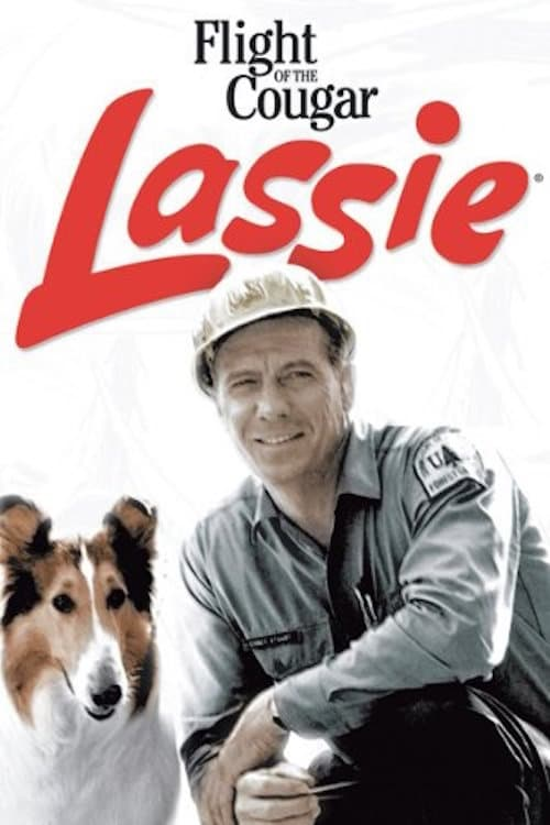 Lassie: Flight of the Cougar (1967)