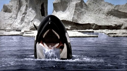Subtitles Orca (1977) in English Free Download   720p BrRip x264