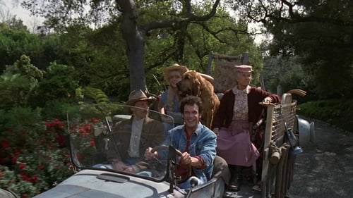 Subtitles The Beverly Hillbillies (1993) in English Free Download | 720p BrRip x264