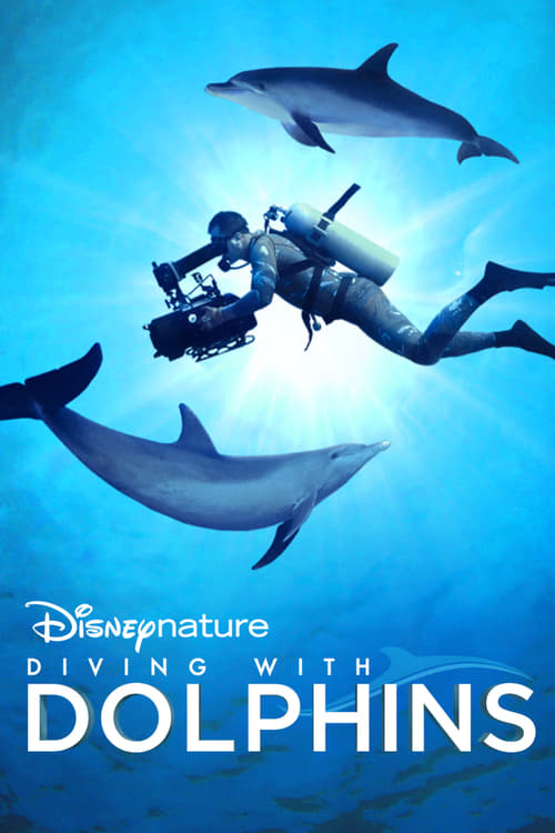 Image Diving with Dolphins 2020