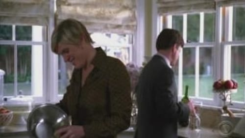 Without a Trace: Season 5 – Episod At Rest
