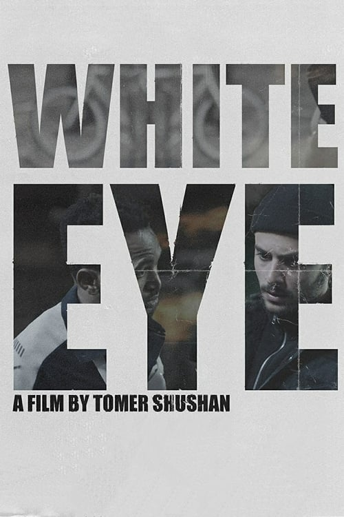 Image White Eye