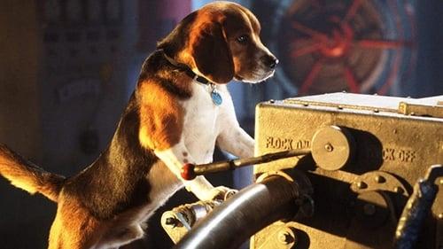 ПОЛУЧИТЬ СУБТИТРЫ Кошки против собак (2001) в Русский SUBTITLES | 720p BrRip x264