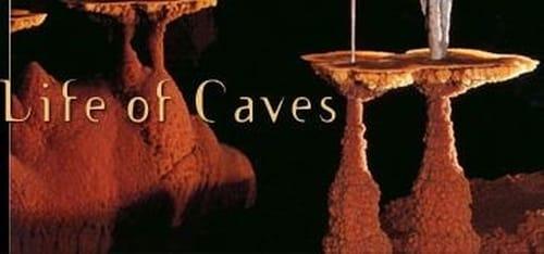 NOVA: Season 30 – Episode Mysterious Life of Caves