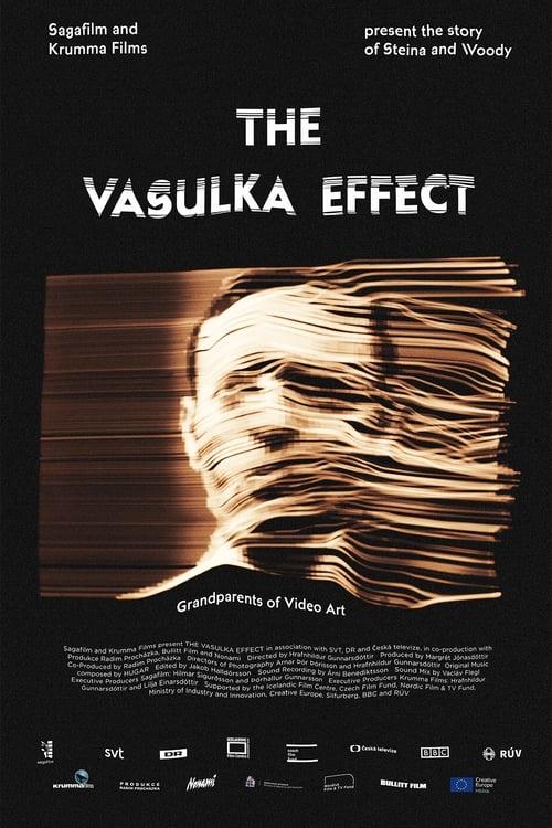 Watch The Vasulka Effect Online Pinterest