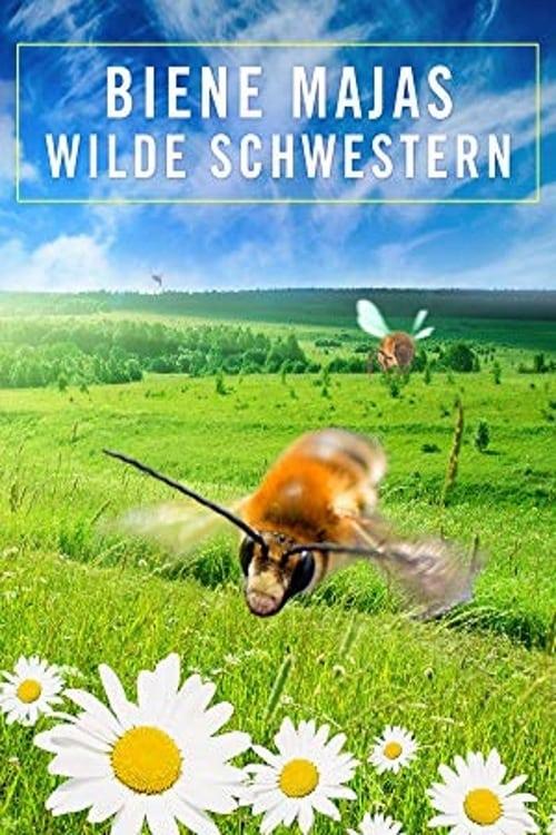 Poster von Biene Majas wilde Schwestern