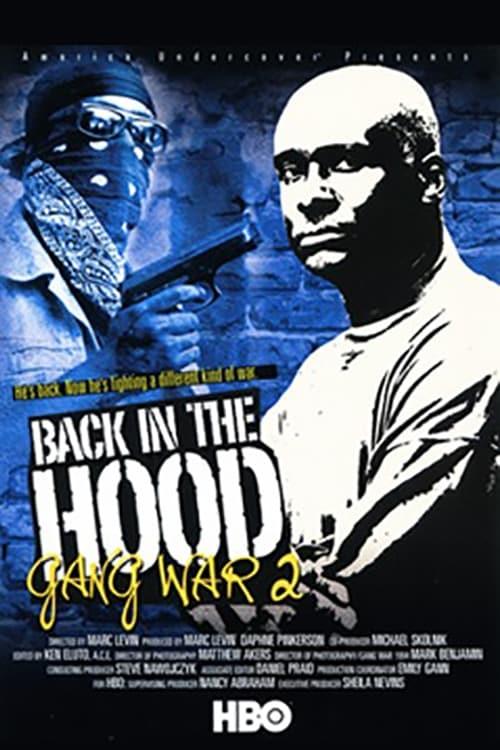 Filme Back in the Hood: Gang War 2 Streaming