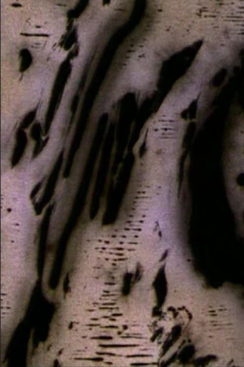 Motion of Light (2004)