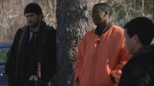Law & Order: Season 19 – Épisode Bailout