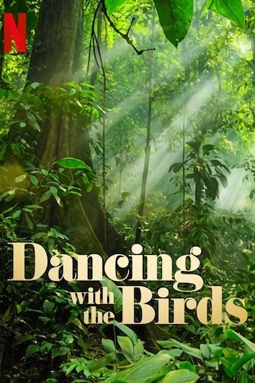 Bailando con los pájaros