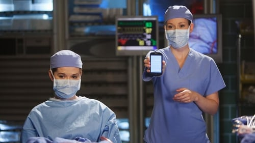 Grey's Anatomy - Season 7 - Episode 13: Don't Deceive Me (Please Don't Go)