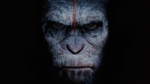 Planeta dos Macacos: O Confronto Dublado ou Legendado