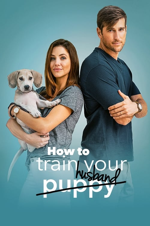 Film How to Train Your Husband V Dobré Kvalitě Hd 1080p