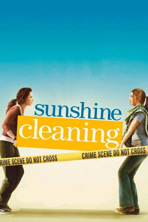 Largescale poster for Sunshine Cleaning